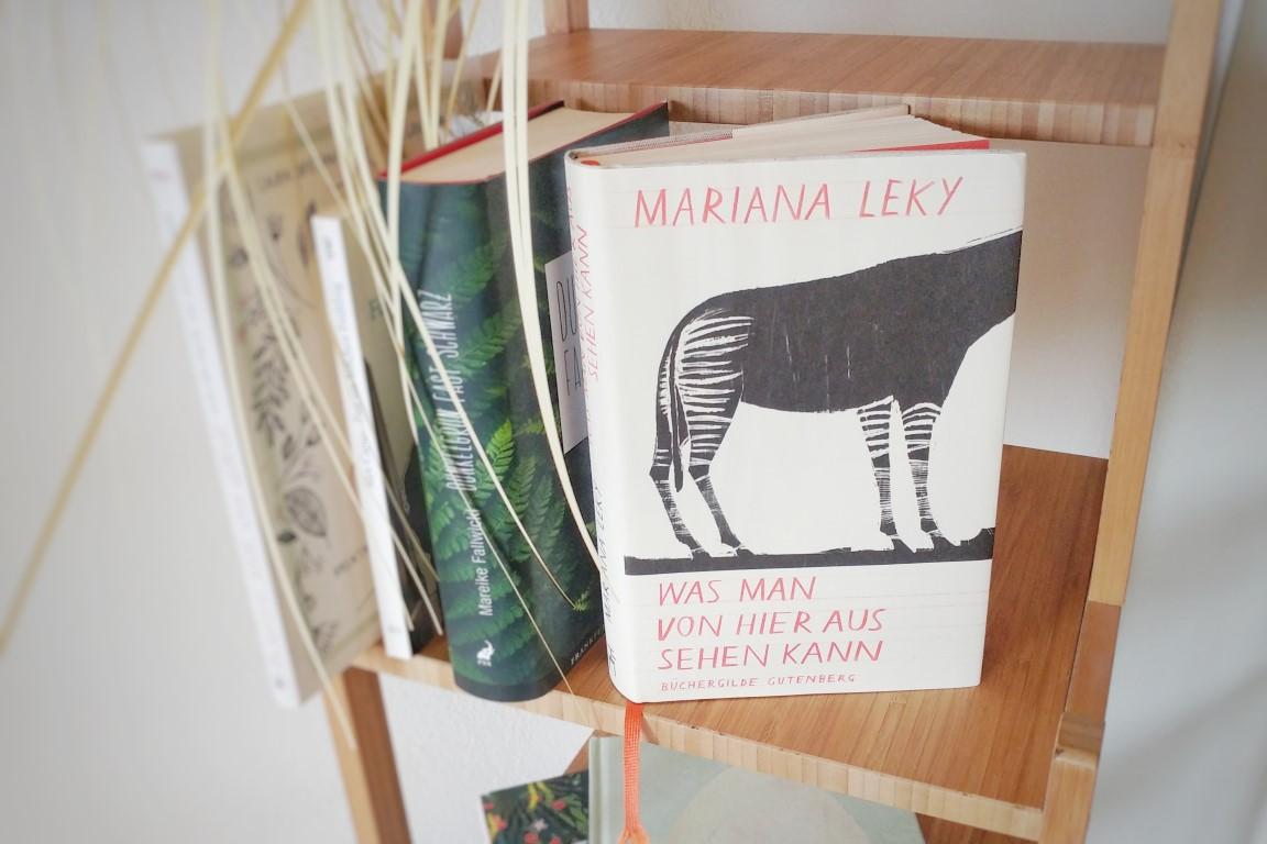 Buchtipp Mariana Leky Was man von hier aus sehen kann