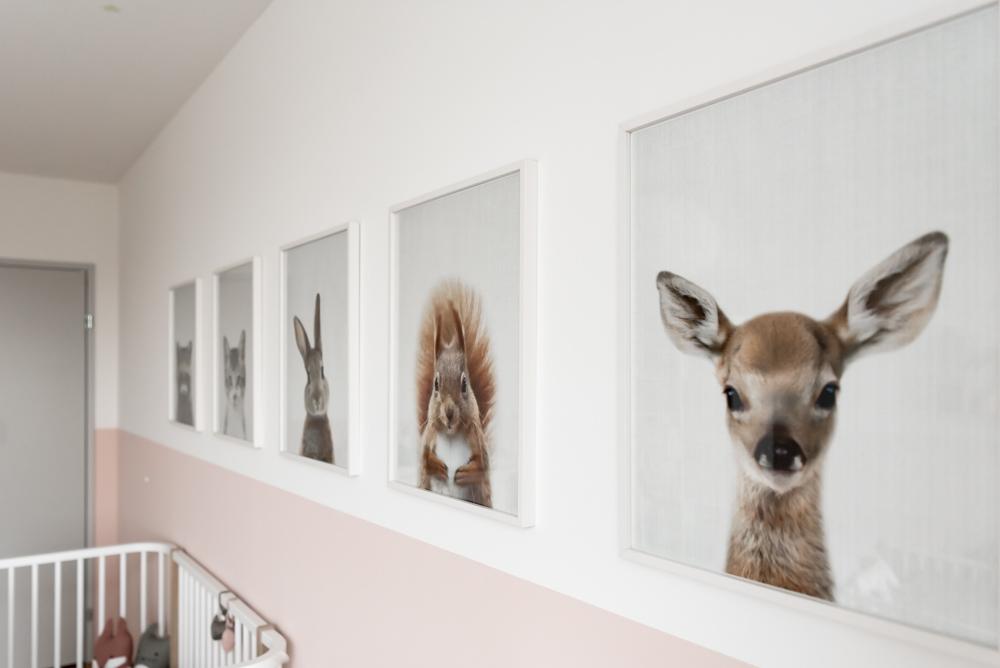 Tierbilderrahmen im Kinderzimmer