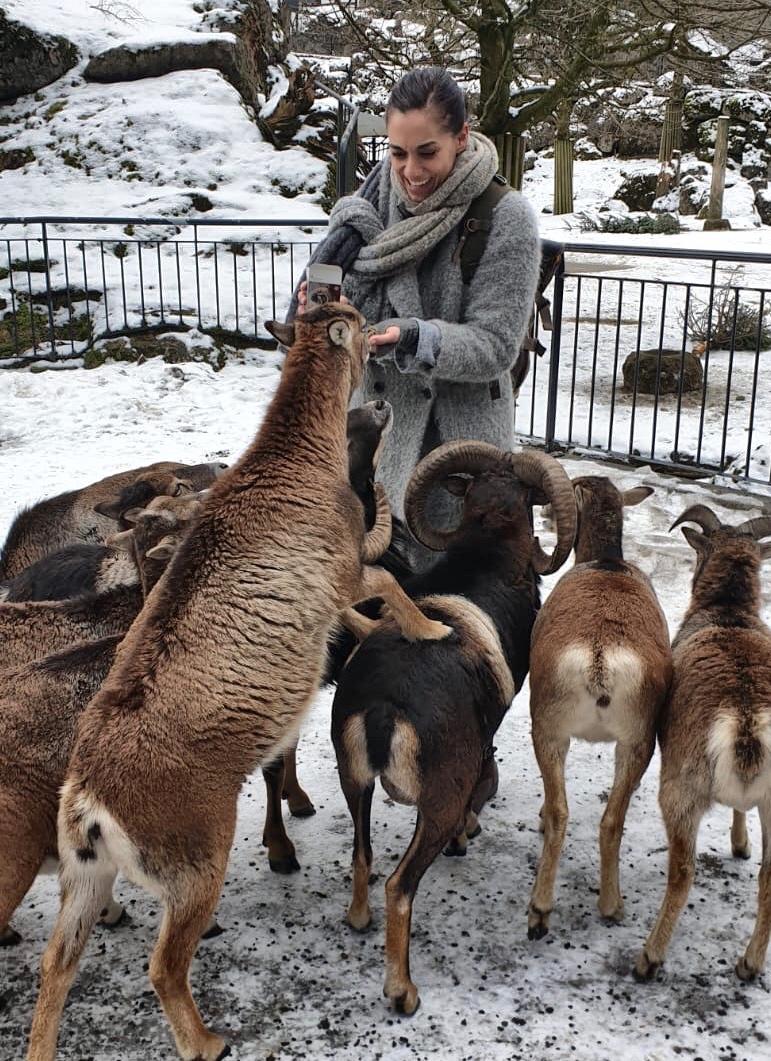Besuch im Tierpark Goldau